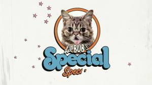 SpecialSpecial
