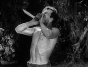 NAT.Tarzan3
