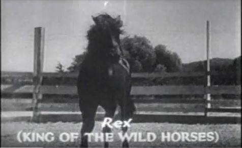 ARR.rex